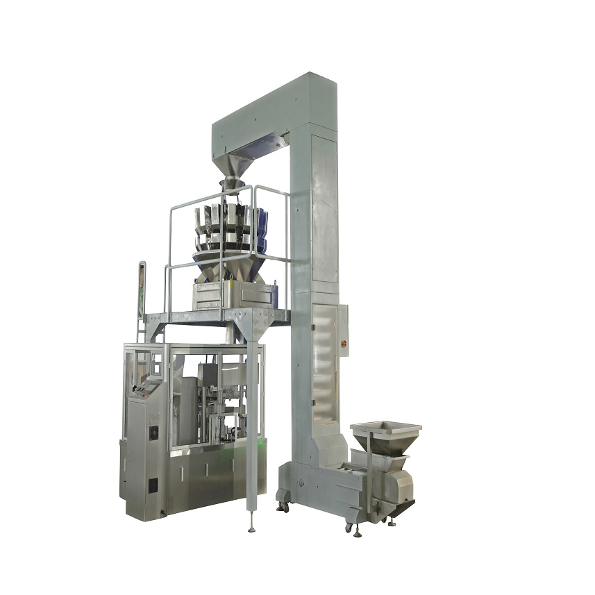 PRE-MADE BAG DOYPACK PACKING MACHINE FOR FOOD PACKAGING GDR100E Featured Image