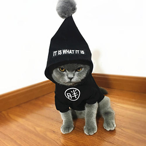 China Cheap price Duration Clothing And Gear Insect Repellent -