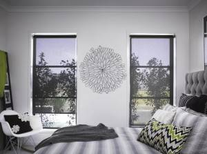 Original Factory Zebra Blind Fabric - Light Filtering – Startextile