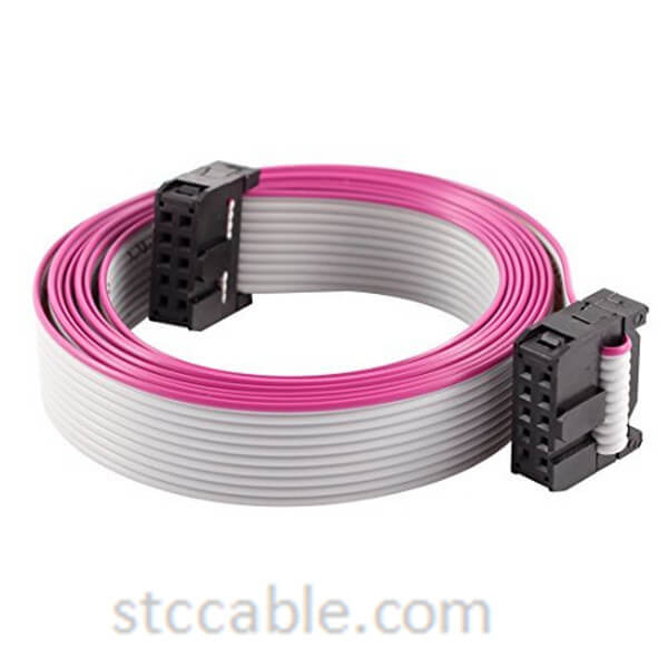 2.54mm Pitch 2x5P 10 Pin 10 Wire IDC Flat Ribbon Cable 3 ft