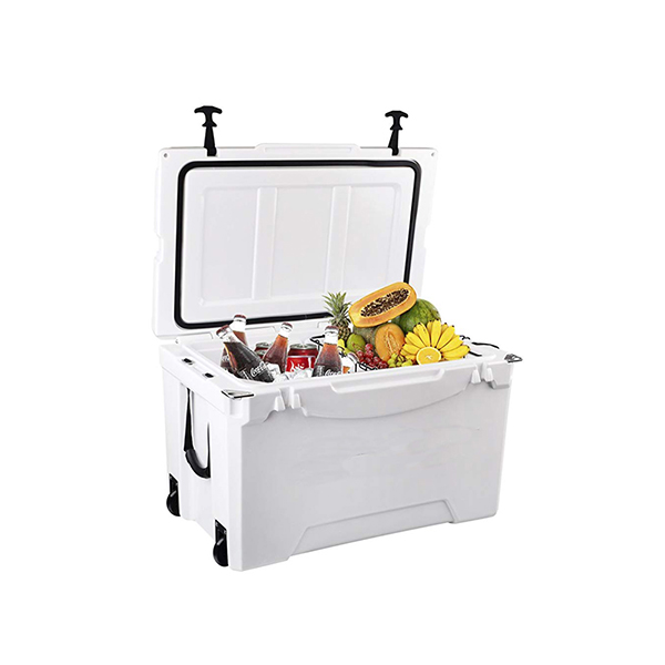 Special Design for Lunch Cooler Box -