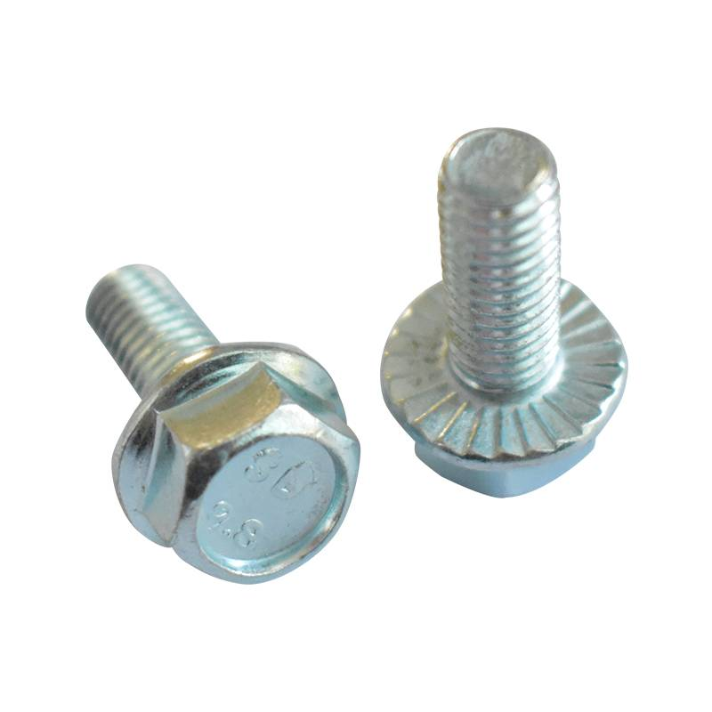 Hexagon Flange Bolts–DIN6921