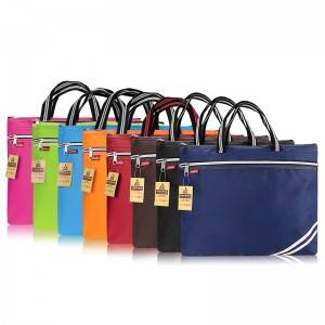 TS-201 Business Handbag