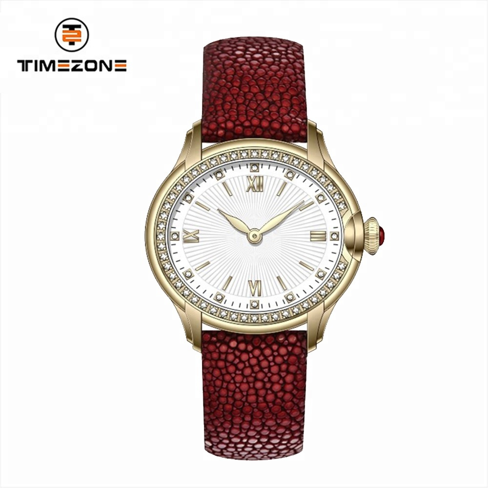Hot Selling simple style cheap stainless steel leather band ladies colorful watches
