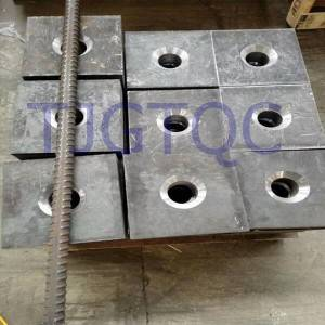 China OEM Square Bearing Plate -