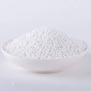 Alumina Catalyst Carrier