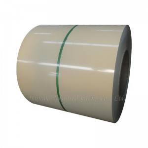 Stainless Galvanized Steel Coil Hot Rolled Steel