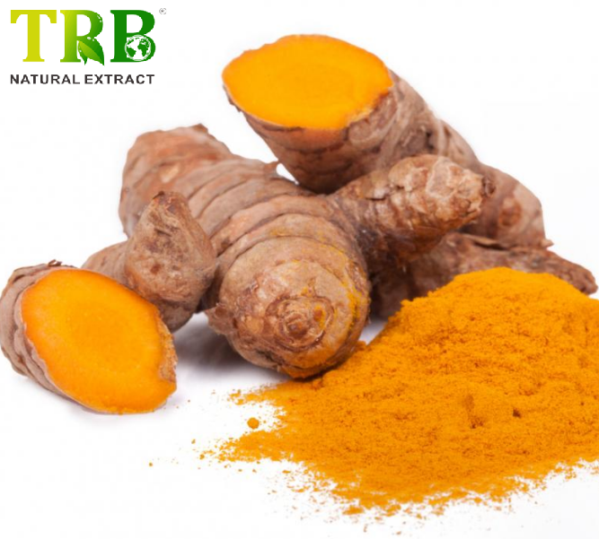 Curcumin 95% Featured Image