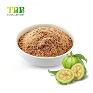 Hot Selling 50% 60% Hca Garcinia Cambogia Extract