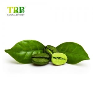 Extract Green Coffee Bean