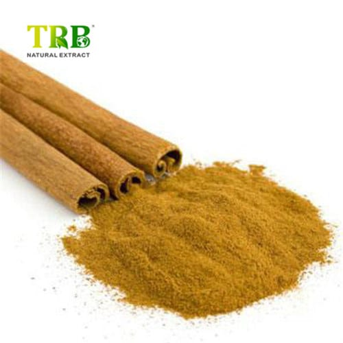 Cinnamon Bark Extract Featured Image