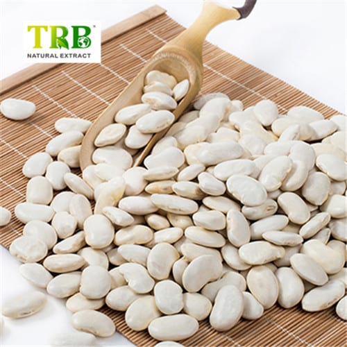 White Koda Bean tsantsa Featured Image