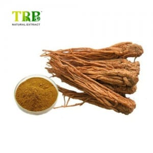 Special Price for Angelica Sinensis Extract Root Dong Quai Extract