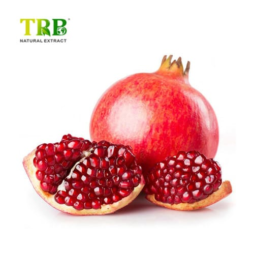 China New Product Maca Extract - Pomegranate Extract – Tong Rui Bio