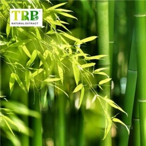 OEM/ODM China 100% Natural Bamboo Leaf Extract Powder 70% Silica / Garcinia Multiflora Champ Extract 10:1
