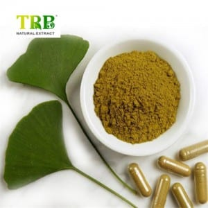 Professional Factory for Ginkgo Biloba Leaf Extract