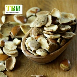 OEM Customized China Irvingia Gabonensis Seed Extract Powder for Weight Loss