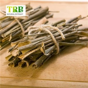 สีขาว Willow Bark Extract