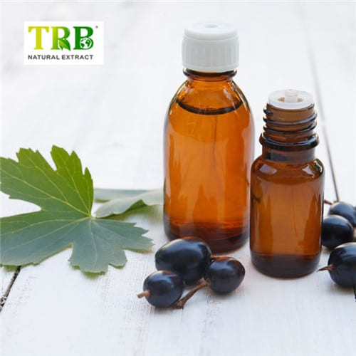 Massive Selection for Bilberry Liquid Extract - Good Quality 100% Organic Black Cumin Seed Oil – Tong Rui Bio Featured Image