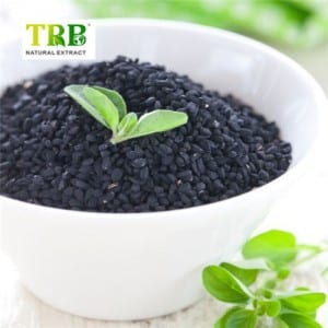 Black Seed extract / Nigella sativa extract