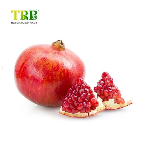 China New Product Maca Extract - Pomegranate Extract – Tong Rui Bio detail pictures