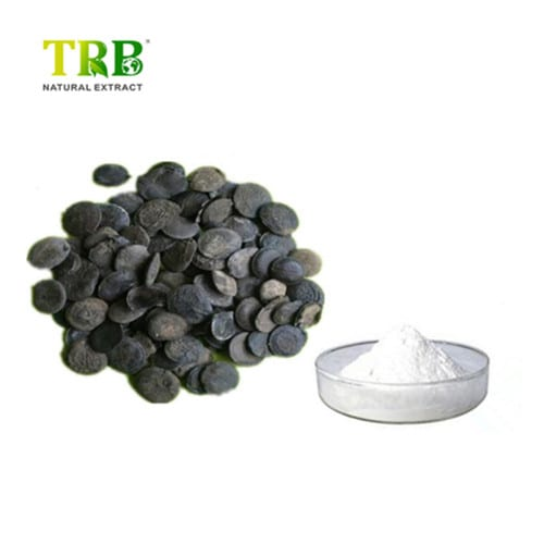 Griffonia simplicifolia seed extract / 5-HTP Featured Image