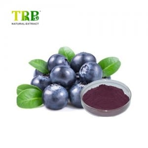 Quoted price for China Bilberry Extract 25% UV Cyanidin Anthocyanidins