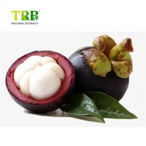2019 New Style China Mangosteen Extract, Alpha-Mangostin 10% 20% 30% (HPLC)
