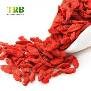 Wolfberry Extract / Goji Berry Extract