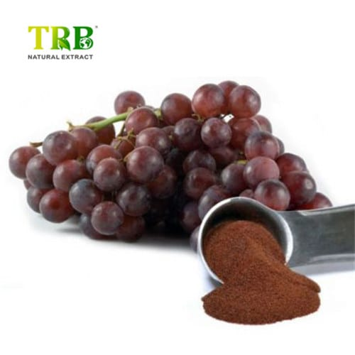 Reliable Supplier Astragalus Extract Ta-65 - Best Price on Natural Opc 95% Grape Seed Extract Powder – Tong Rui Bio Featured Image