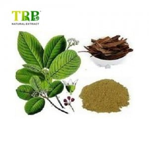 Factory For Direct Sale Cascara Sagrada Extract Powder10:1 Cascara Sagrada Bark Powder