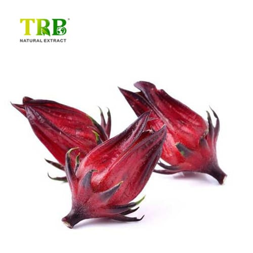 Roselle Extract Featured Image