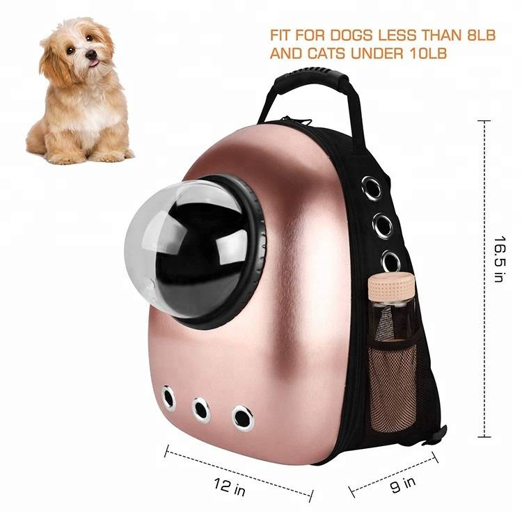 Factory supplied Plush Bear -