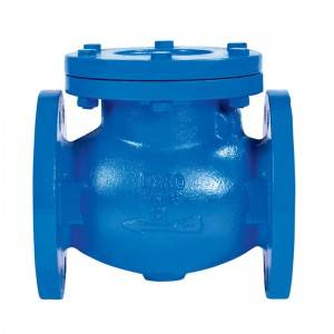 Flange End Swing Check Valve PN25