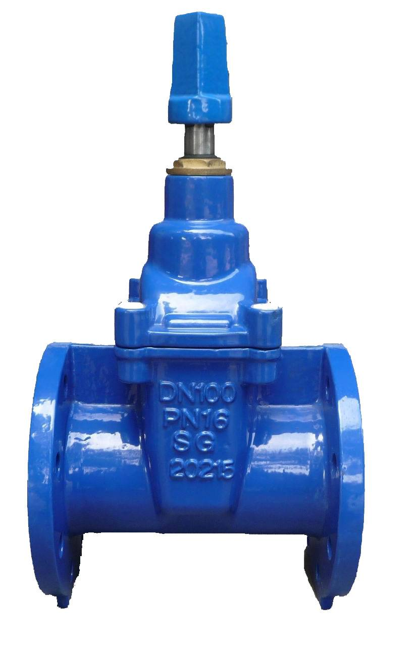 Flanged End NRS Resilient Seated Gate Valves-BS5163 Featured Image