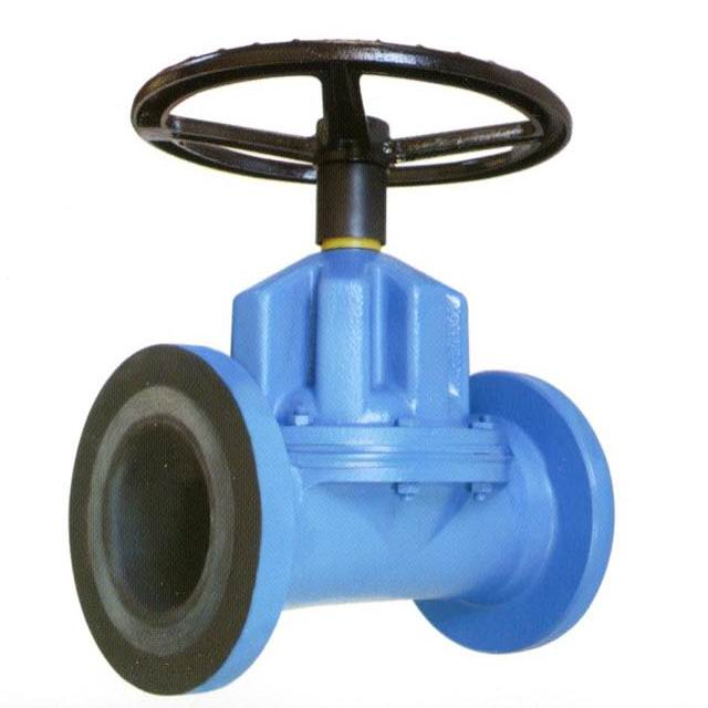 professional factory for Cast Iron Foot Valve With Stainless Steel Strainer -