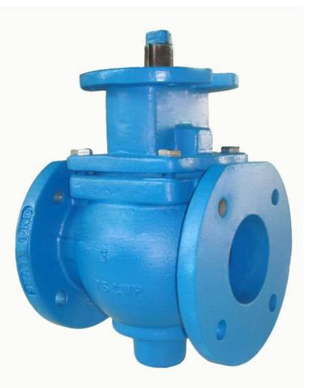 Eccentric Plug Valve with bare stem