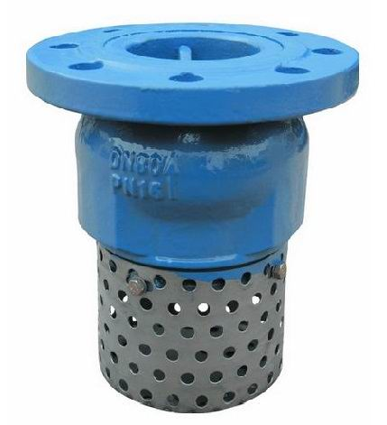 Flanged End Foot Valves-Type A