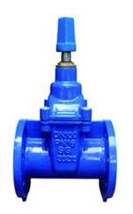 Leading Manufacturer for One Way Check Valve -
