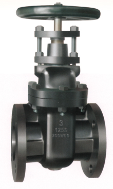Flanged End Non-Rising Stem Gate Valves-MSS SP-70 125LB