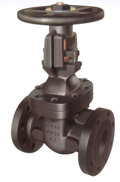 Flanged End Rising Stem Gate Valves-BS5150 PN25