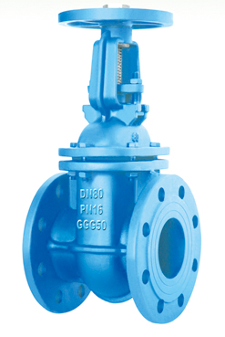 Reasonable price Swing Check Valve -