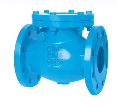 Flanged End Swing Check Valves-DIN3202 F6