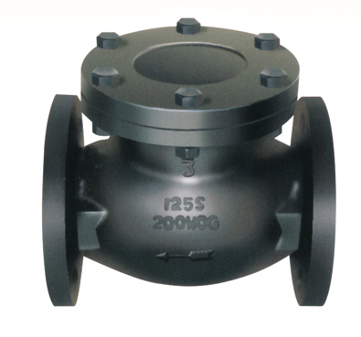 Flanged End Swing Check Valves-MSS SP-71 125LB