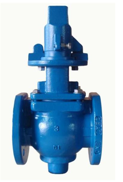 Eccentric Plug Valves with Square Cap
