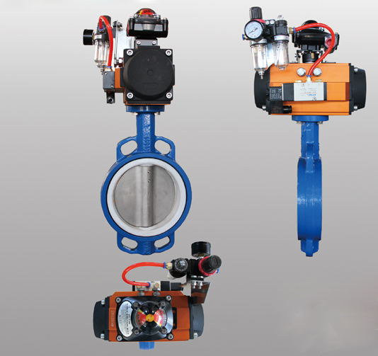 Factory Promotional Gas Check Valve -