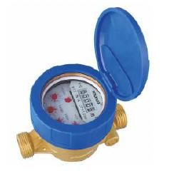 Factory supplied Fnpt Check Valve -