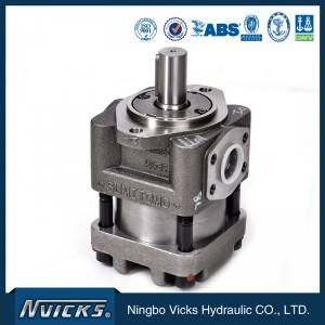 QT52 High Pressure Sumitomo Internal Gear Pump for Injection Machine