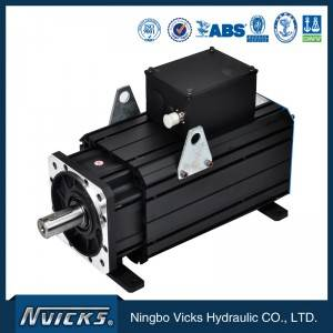 Vicks Servo Motor AC Electric Motor for Servo Injection Machine