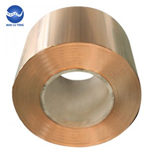 Tin bronze strip